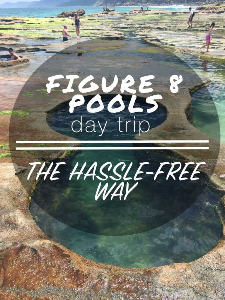figure eight pools tours